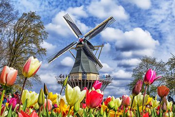 wind mill and tulip view of the Netherlands for a Mechanical engineer job